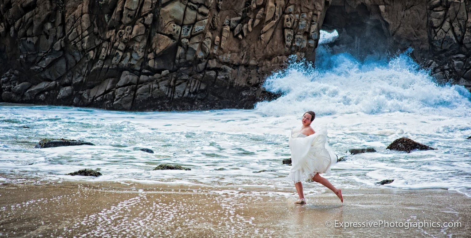 Fresh & Alive... LOVE this!!!  Big Sur Wedding Photographers
