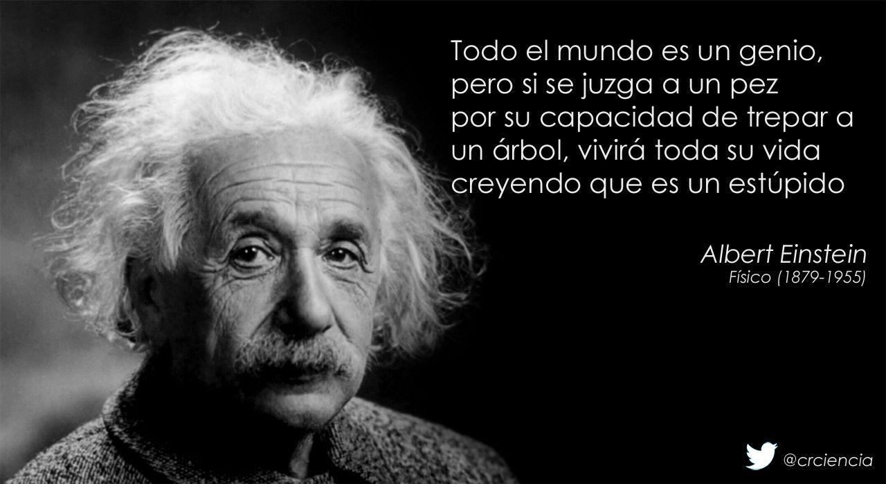 Einstein todo el mundo es un genio educación