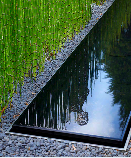 Minimal garden…. reflecting pool, gravel, and (once again ...