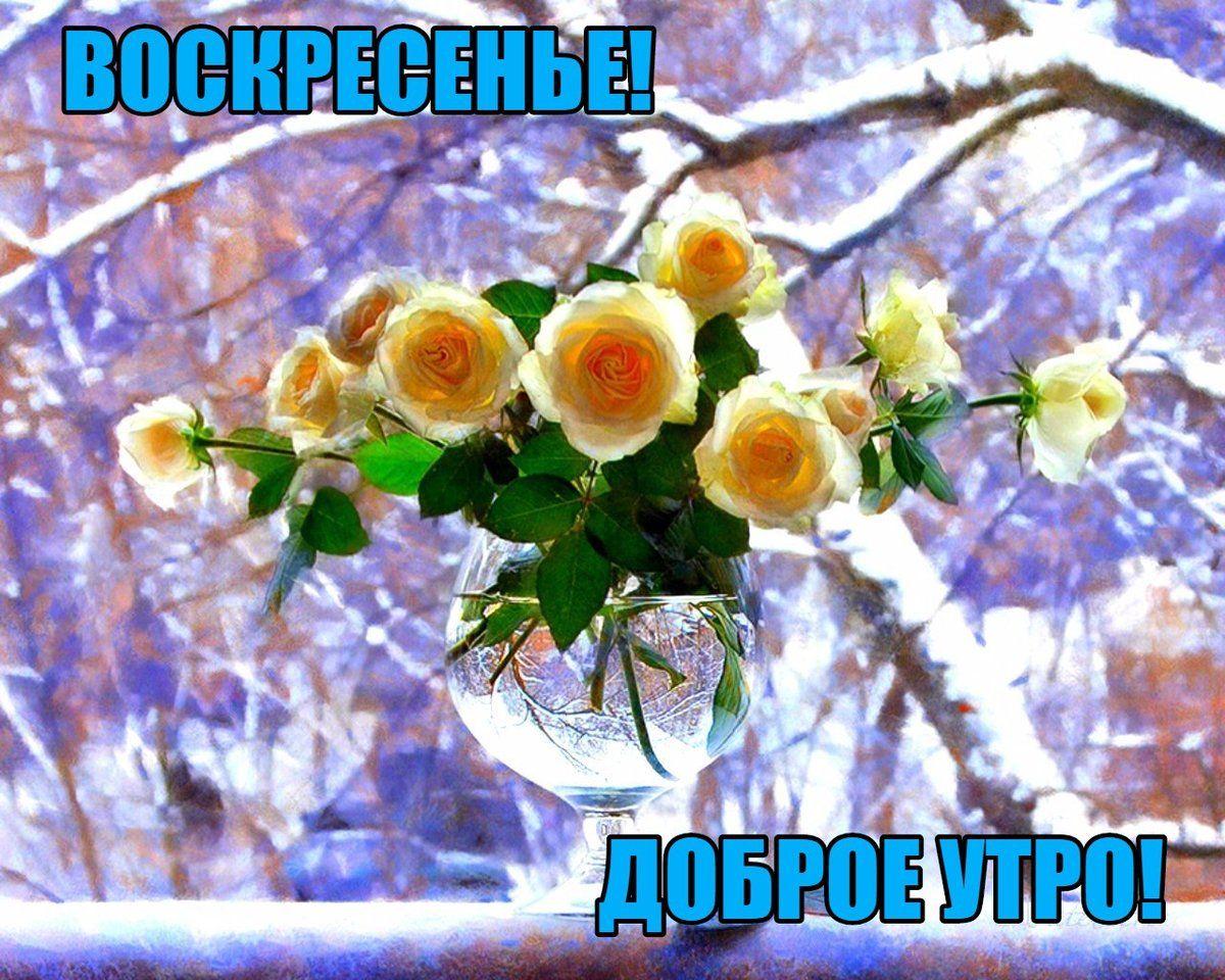 Smeshnye Kartinki Dobroe Utro Voskresene 35 Foto Dobroe