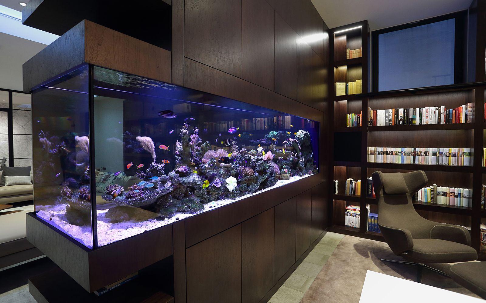 Goede Modern Aquarium Installation - Aquarium Architecture | Saltwater LF-04