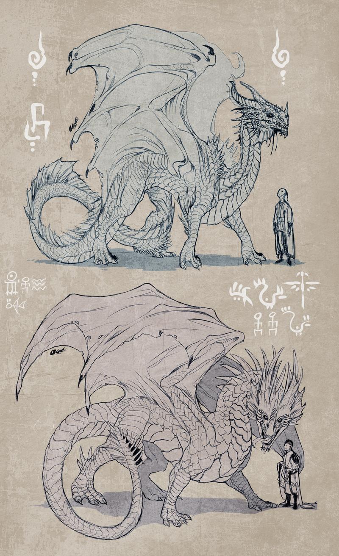 Dragons Sketch By Zarnala Deviantart Com On Deviantart Dragon