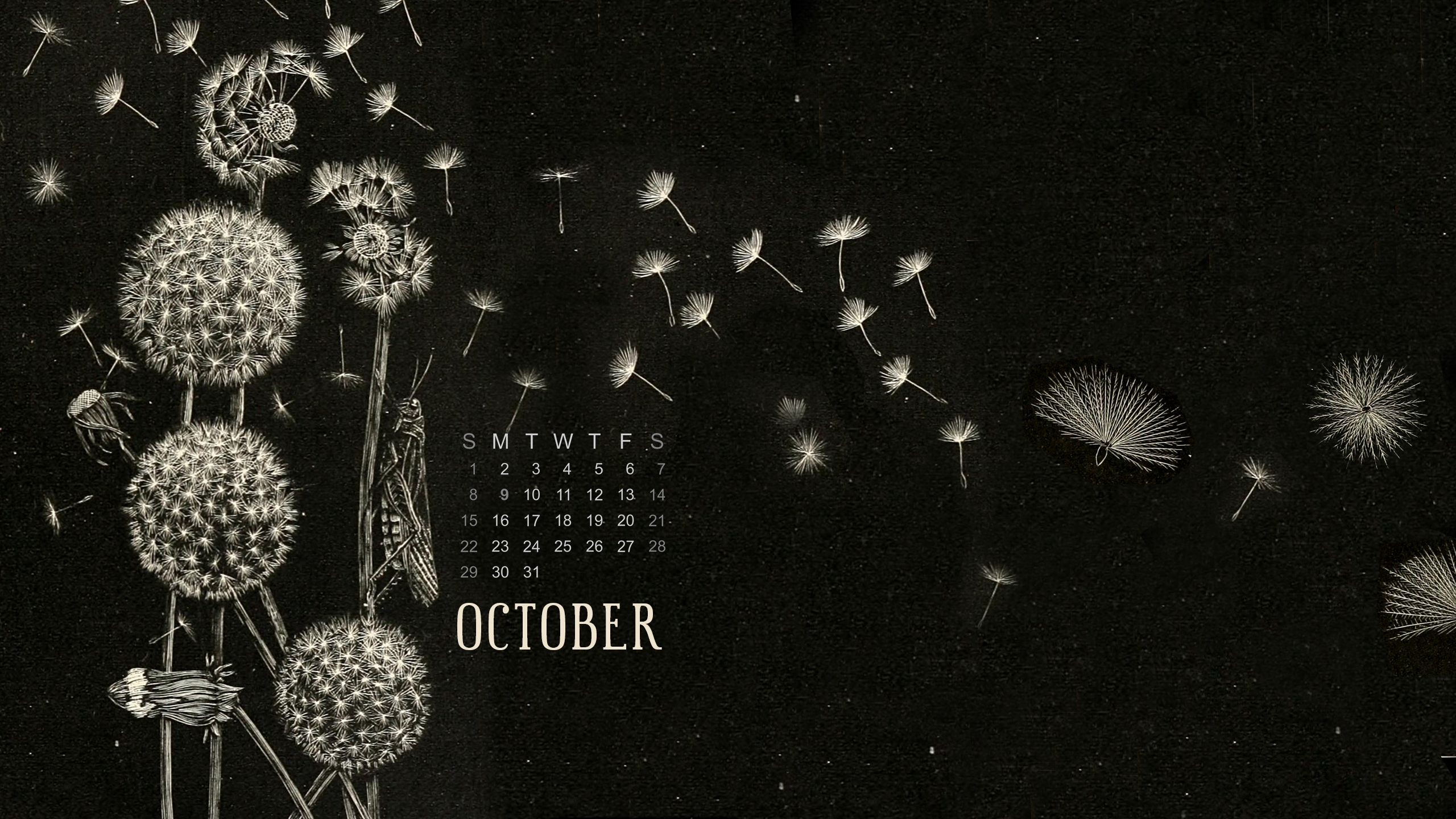 October 2017 Free Calendar Desktop And Iphone Wallpaper Calendar Wallpaper Calendar Wallpaper 2017 Iphone Wallpaper October