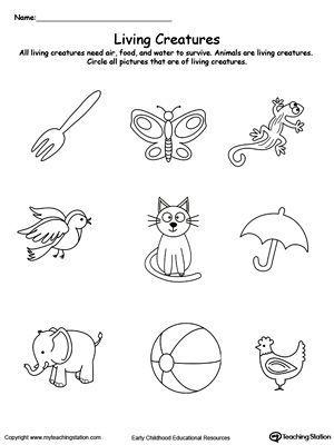 Understand Living Things Animals Science Worksheets Kindergarten Science Preschool Worksheets