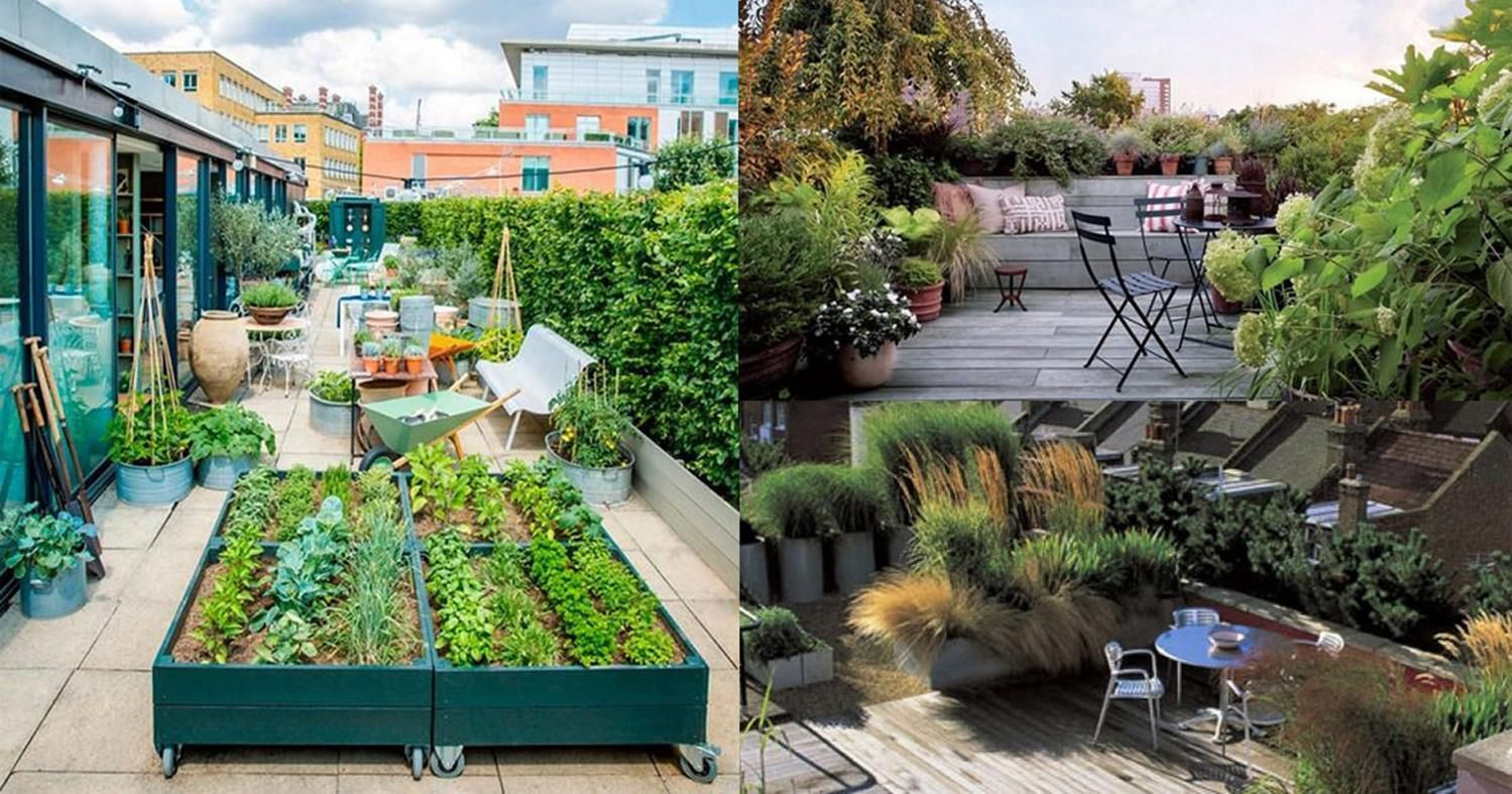 35 Brilliant Roof Garden Design Ideas Decorecord Roof Garden Design Terrace Garden Design Roof Garden