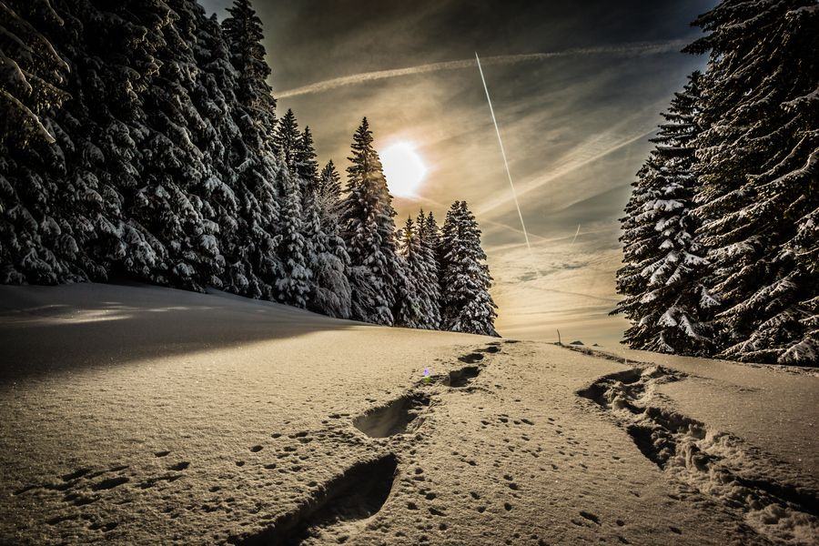 Snowshoeing by Joshua Graef, via 500px | PHOTOGRAPHY