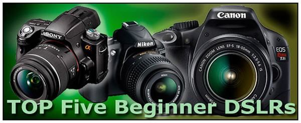 Best Canon Dslr Camera For Beginners - about camera