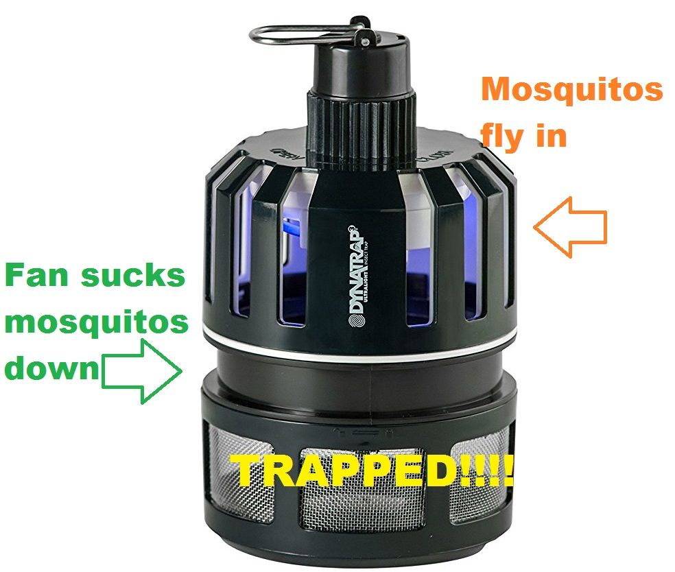 A diy mosquito trap that actually works mosquito trap