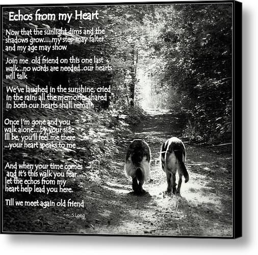 Echos from my Heart Canvas Print / Canvas Art by S