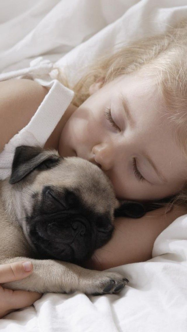 What Do You Need To Be Happier Pugs Sleeping Dogs Girl Dog