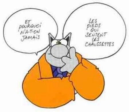 Dessins du chat funny humor and humor - Dessin chat humour ...