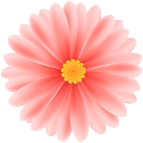 Daisy Red Flower Png Clipart Flowers Red Flowers Clip Art
