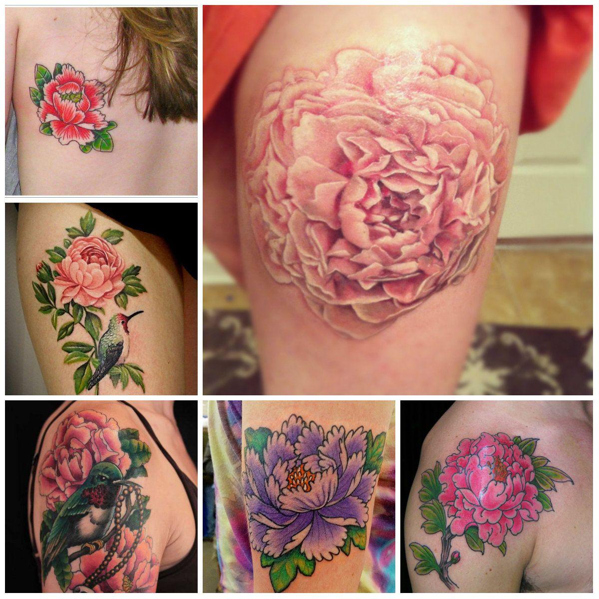 1000 Ideas About Peonies Tattoo On Pinterest: Peonies Tattoo, Tattoo