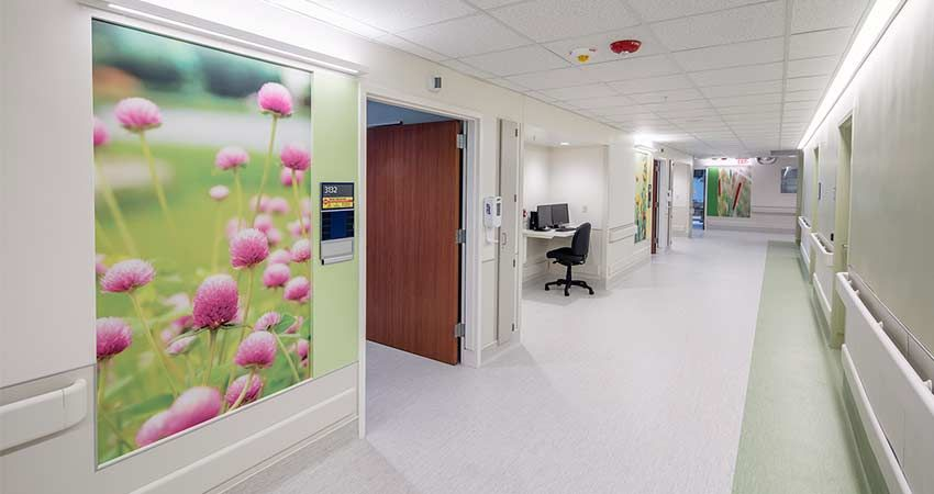 Healthcare Environments Are The Perfect Place To Incorporate Soothing Imagery With The Protection Of Aspex Printed W Healthcare Design Renovations Wall Prints