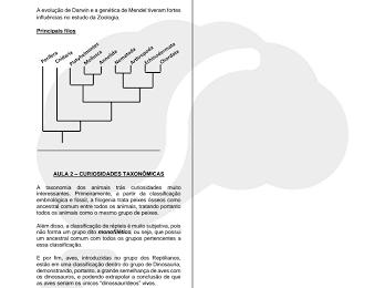 tabla metabolismo basal en el cuerpo humano