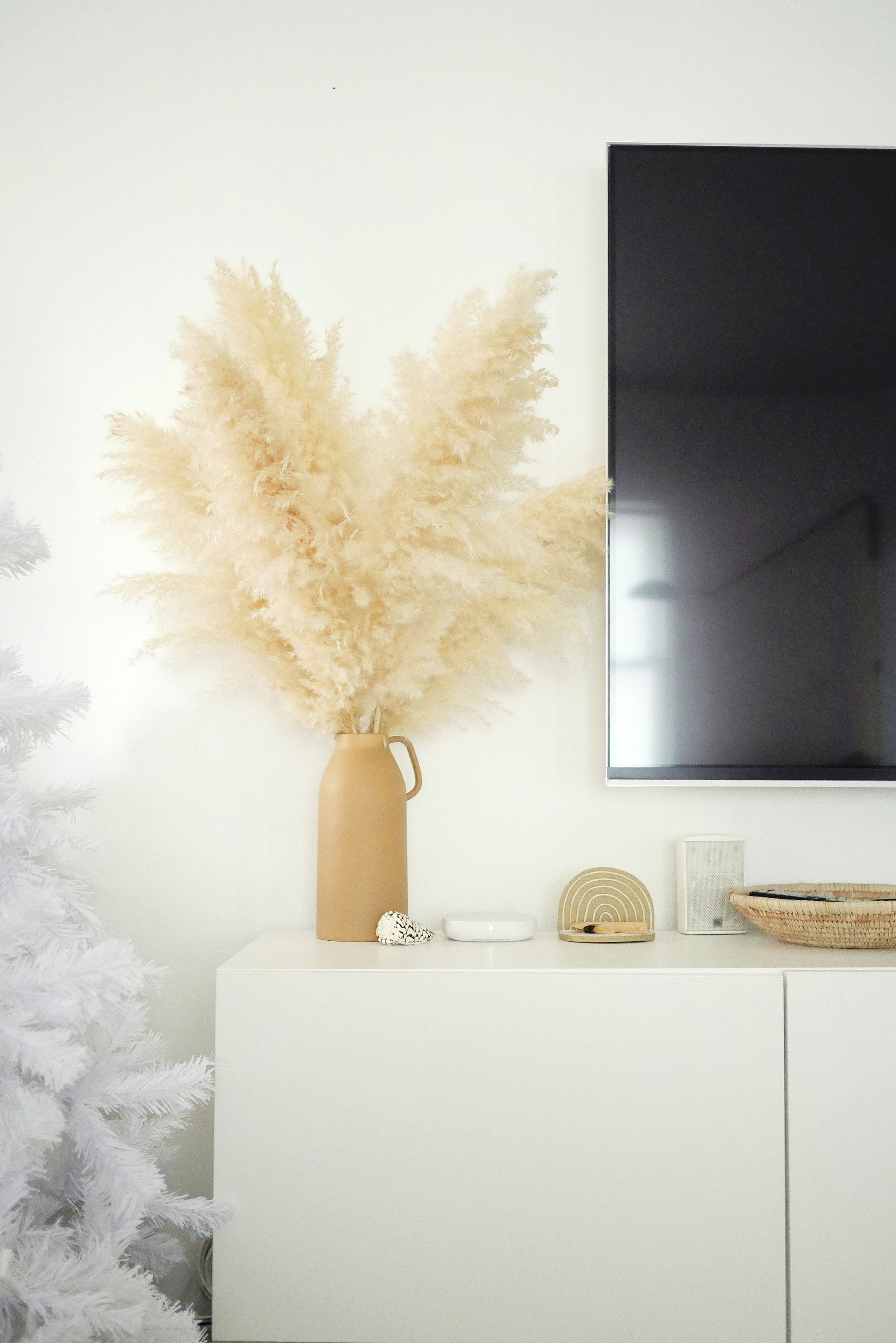 Pampas grass... I'm obsessed