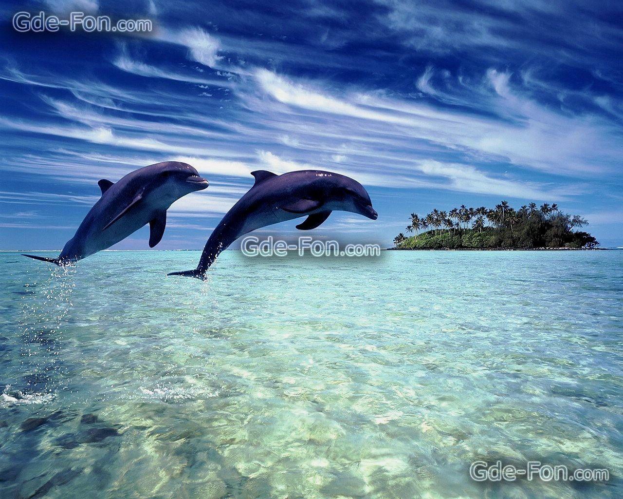Super Images Fond Ecran 1280X1024 |  Fonds d'ecran gratuits pour  XS59