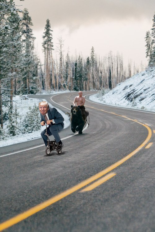 Trump being chased by Putin on bear Meanwhile in canada