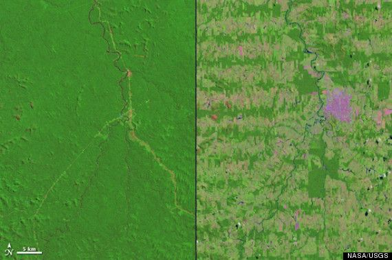The Disappearing Amazon Save The Rainforests Amazon