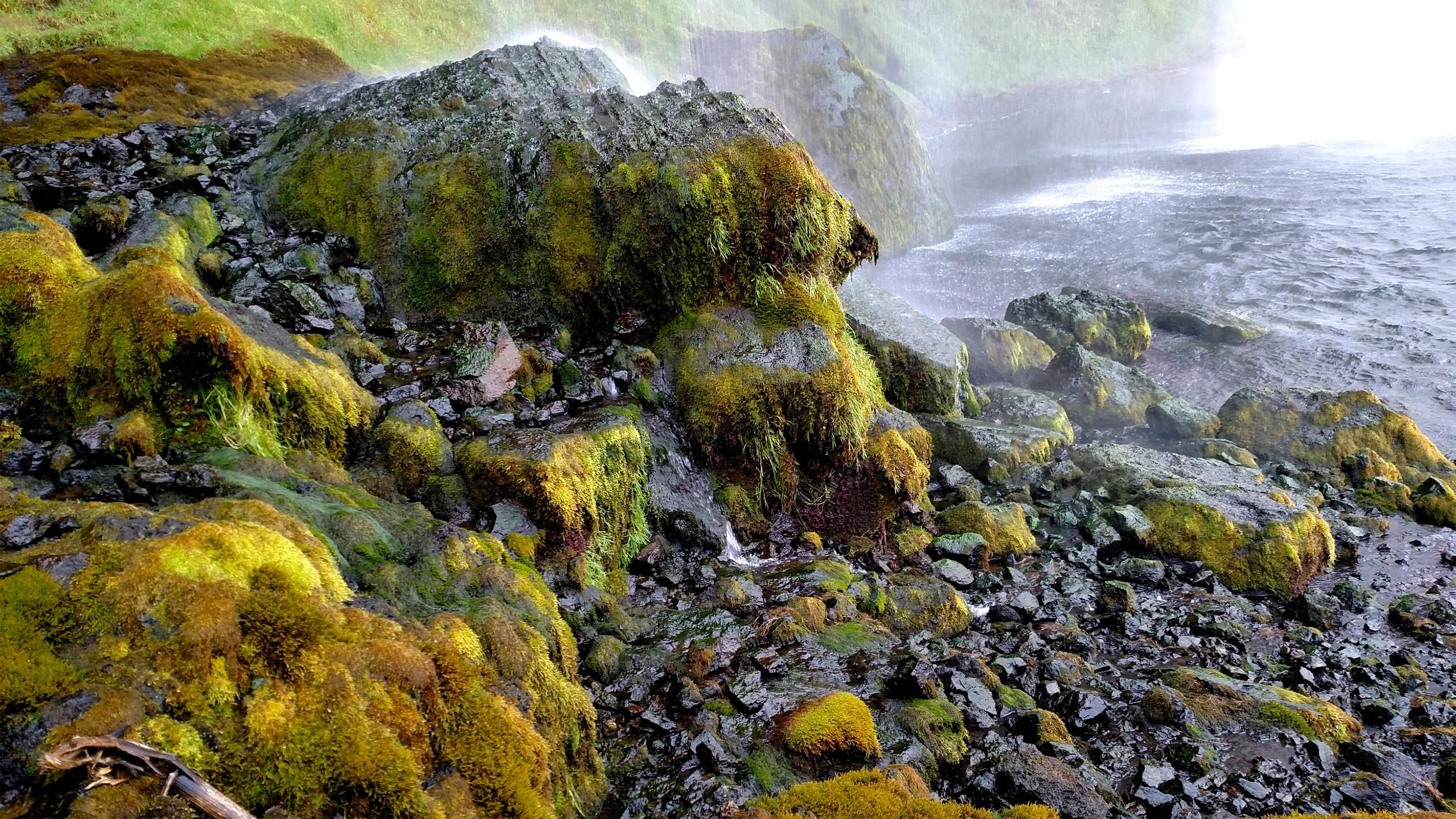 The Mossy Rocks Behind Seljalandsfoss Waterfall In Iceland Oc 2560x1440 Https Ift Tt 2tzwonn Seljalandsfoss Waterfall Iceland Waterfalls Waterfall