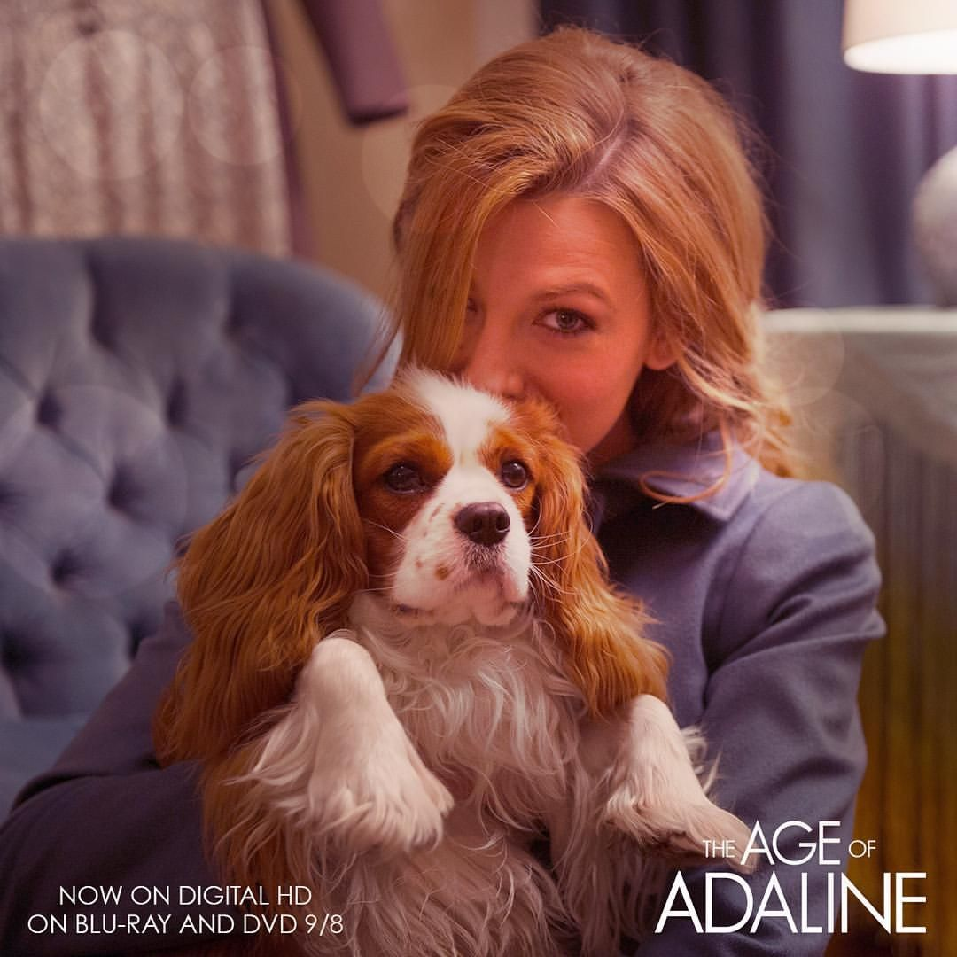 Age Of Adaline On Instagram Their Affection Is Timeless Their Love Is Forever Happy Nationaldogday From Ageofadaline Age Of Adaline Blake Lively Age