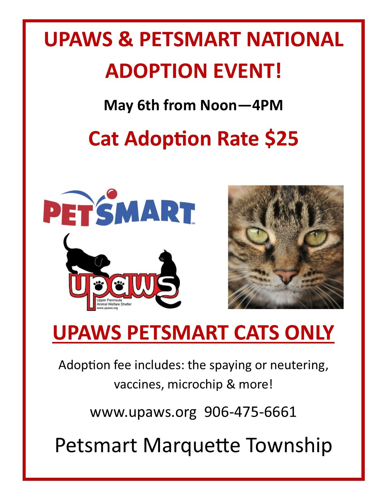 Petsmart National Adoption Event Is Saturday Noon 4pm At Petsmart In Marquuettte Petsmart Adoption