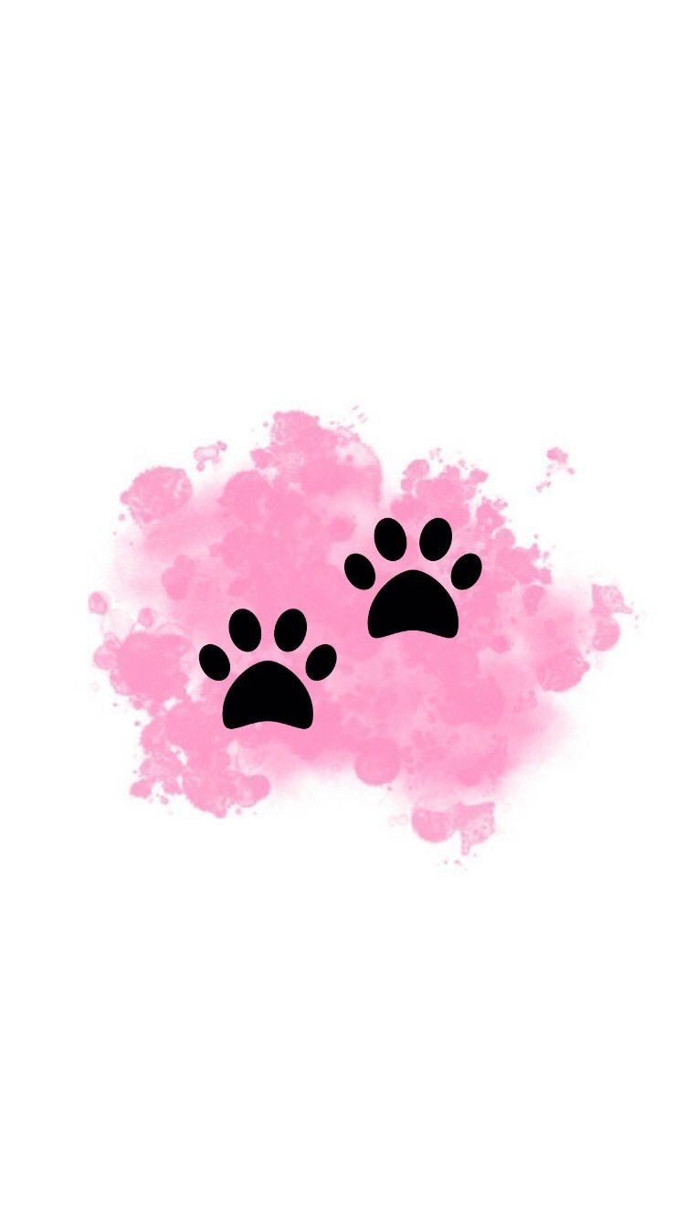 Instagram Icons Mascots Pawprint Pink Instagram Frame Pink Instagram Instagram Logo Instag Pink Instagram Instagram Wallpaper Instagram Highlight Icons