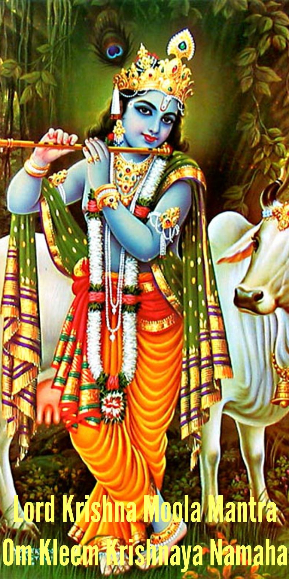 Om Kleem Krishnaya Namah – Shri Krishna Moola Mantra | Hinduism