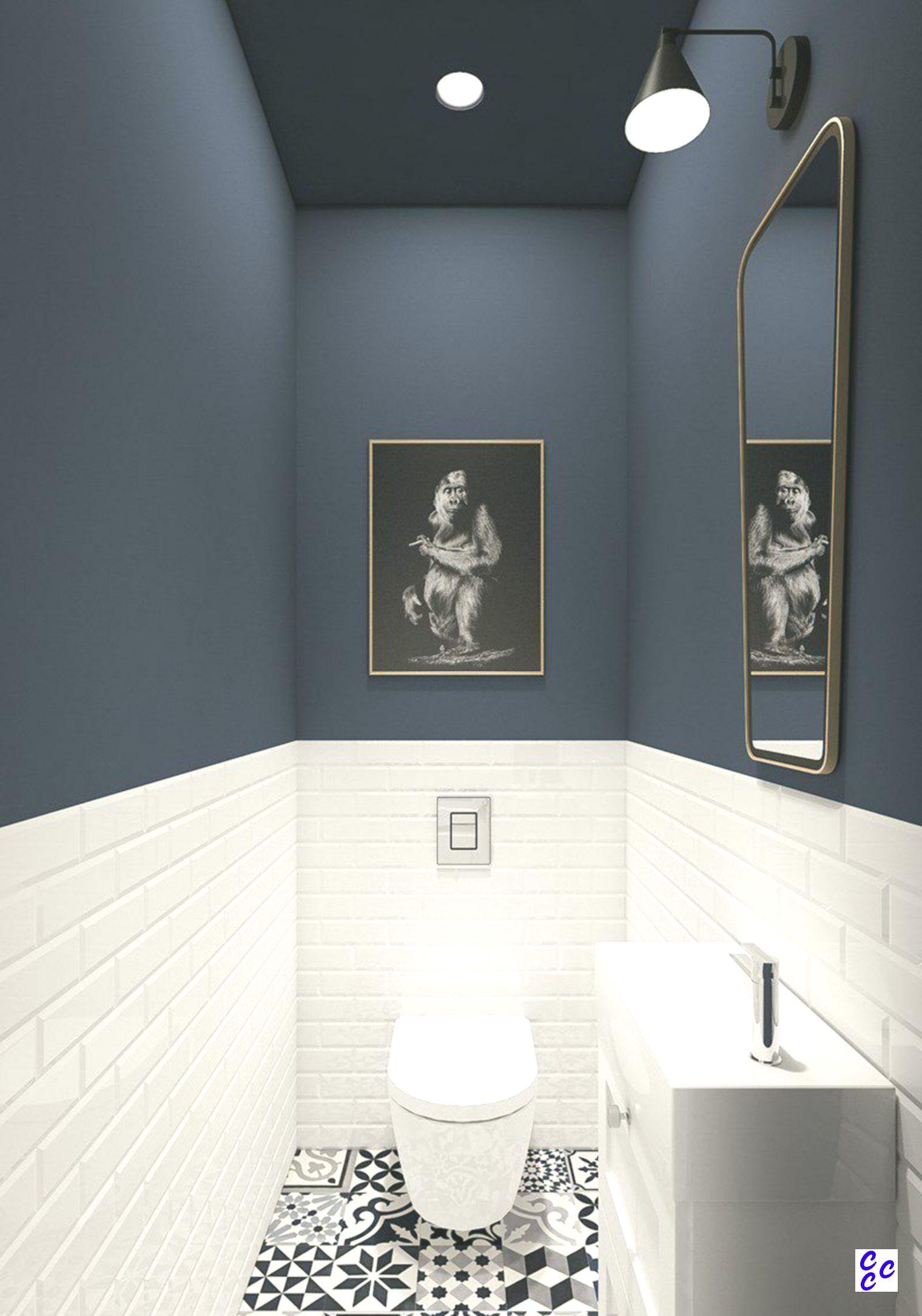 Deckengemalde Ideen Blaue Wandfarbe Tolle Badezimmer Kleines Badezimmer Umgestalten
