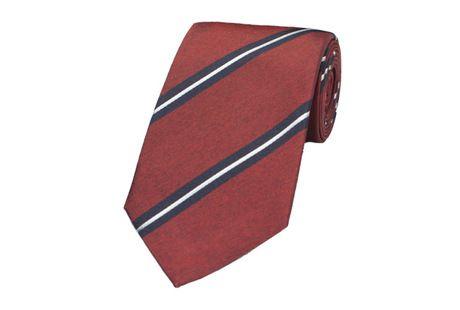 The Maroon Astin Stripe Tie collar