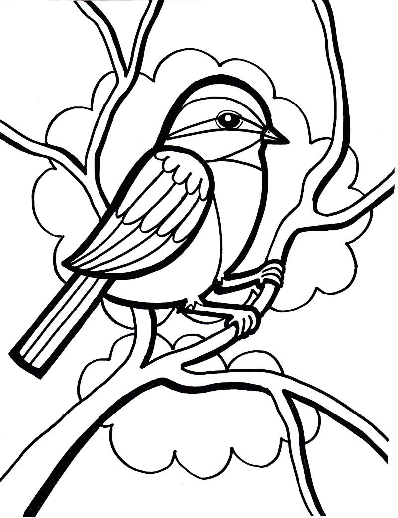 Sparrow bird coloring page kids coloring pages for Coloring page of a bird