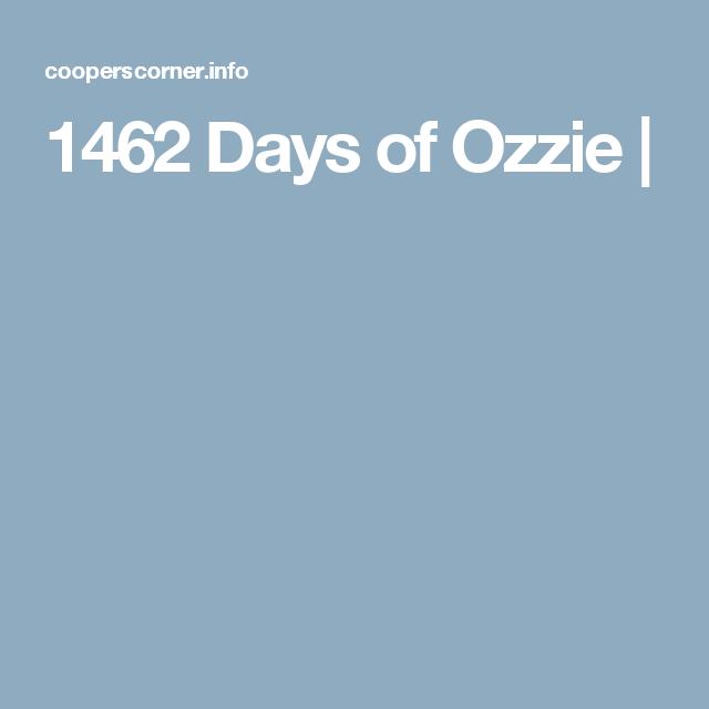 1462 Days of Ozzie |