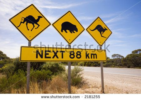 australia iconic images - Google Search