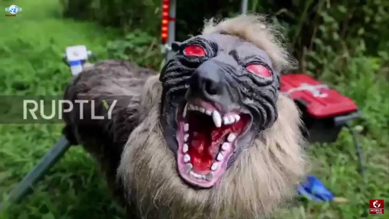 SUPER MONSTER WOLF IS A ROBOTIC PET THAT WILL SAVE FARMS