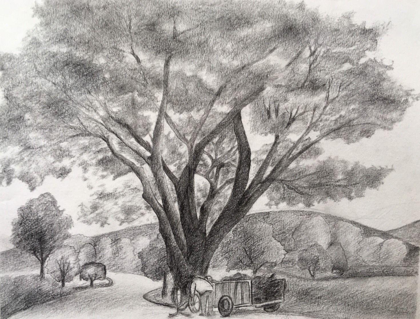 การวาดเส น ท วท ศน บ านไร ทอส ศ ภกร มงคลพร กอล ฟ ม ๖ Drawing Landscape Mr Supakorn Mongkolporn Golf M 6 ภาพศ ลปะ ท วท ศน ภาพวาด