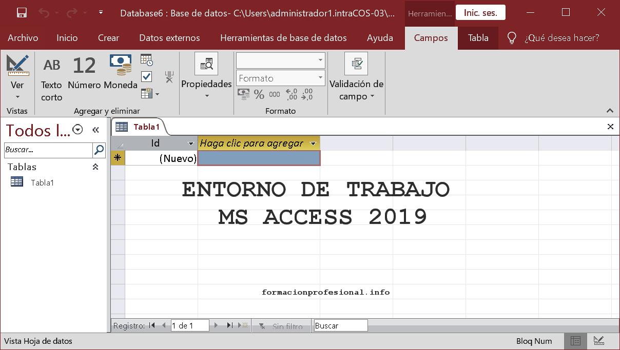 Entorno de trabajo de Access