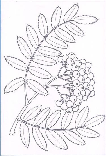 Használja a nyilakat, kapcsoló a lejátszott kép | Herbst Blätter ...