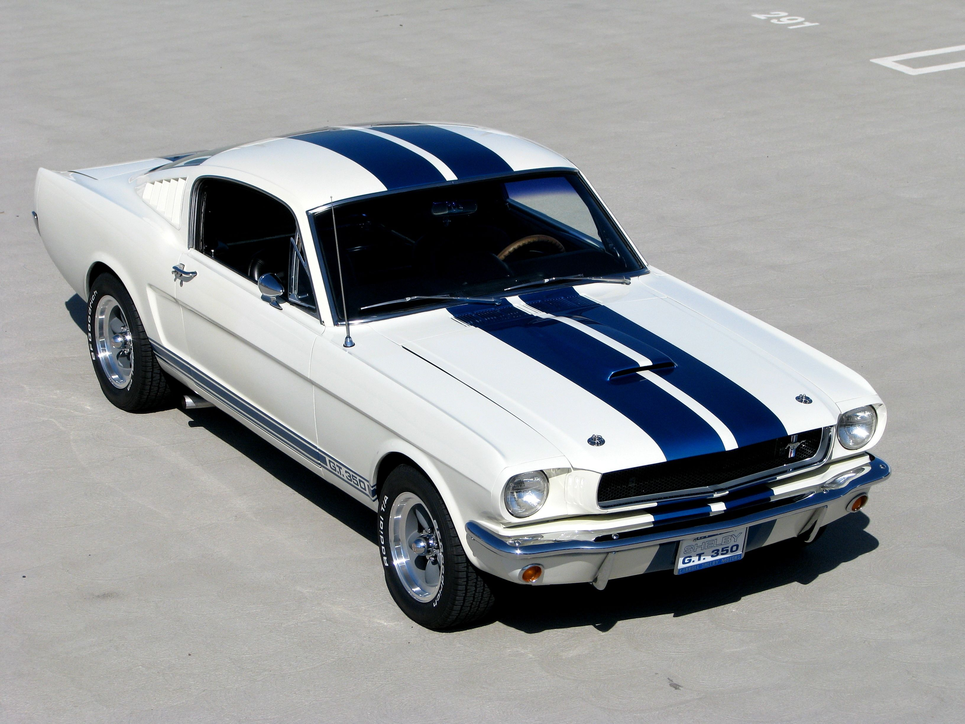 65 mustang white with blue stripes dresses