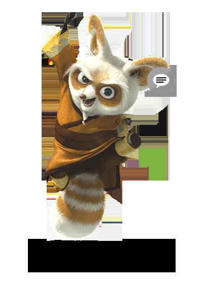 Kung Fu Panda Animals Shifu