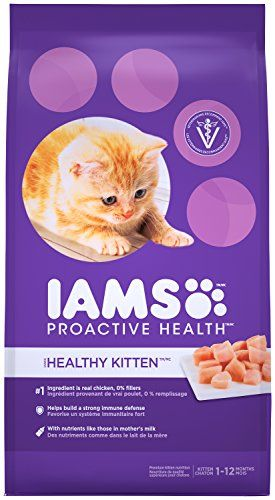 Cat Food Dry Iams Proactive Health Kitten Dry Cat Food 7 Pounds You Can Get More Details By Clicking On The Imag Kitten Food Dry Cat Food Natural Pet Food