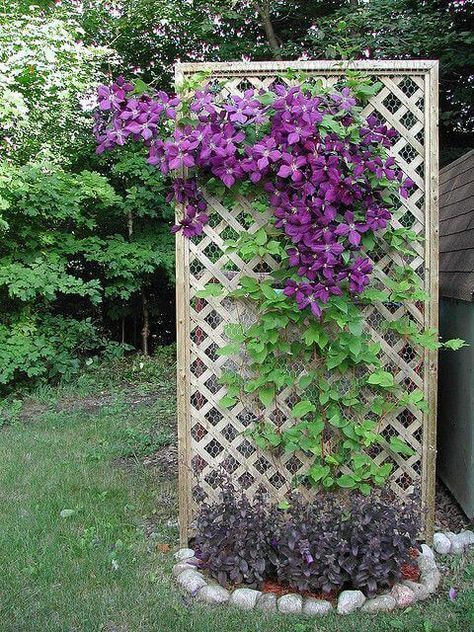 31 diy lattice trellis projects for your yard trellis in on inexpensive way to build a wood privacy fence diy guide for 2020 id=40481