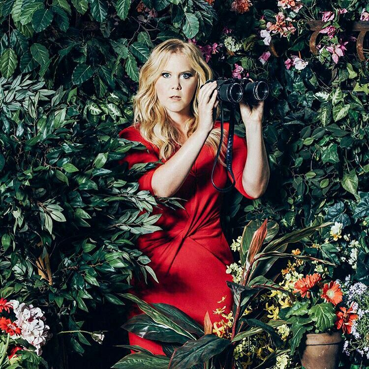 Amy Schumer Amy Schumer Actresses Amy