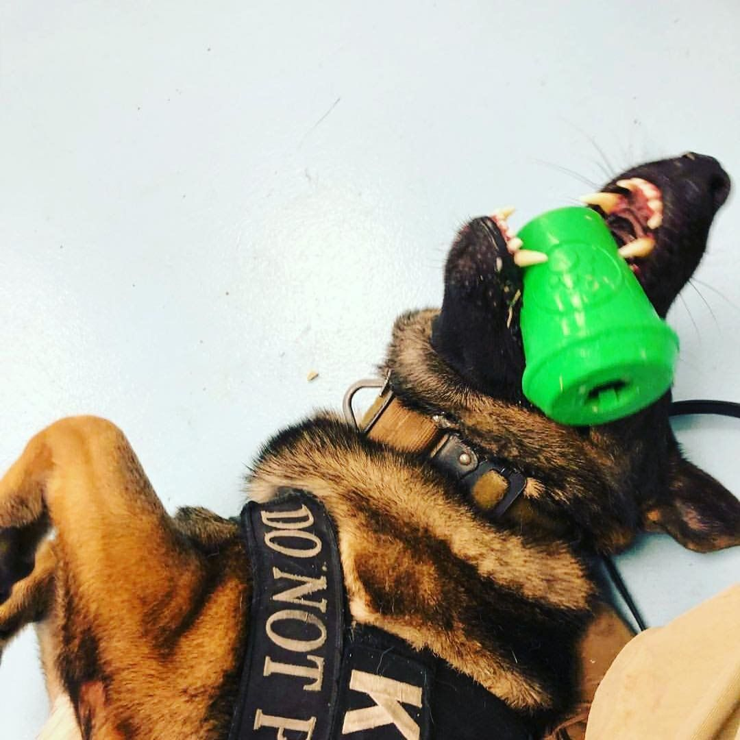Sodapup Tough Dog Toys For Large Dogs Treat Dispensing Dog Toys