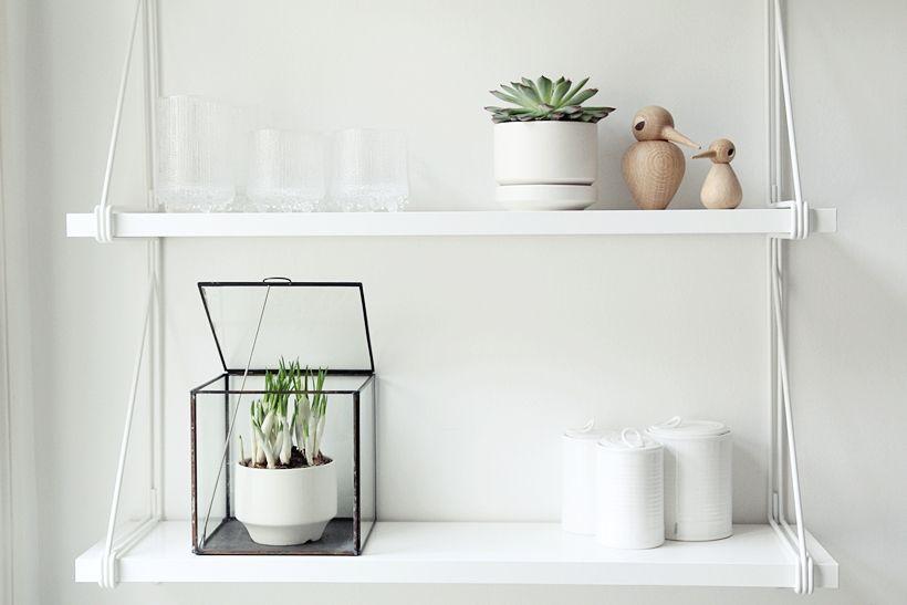 15x Eucalyptus Huis : Glass & green my second hand life amanda stas interior details