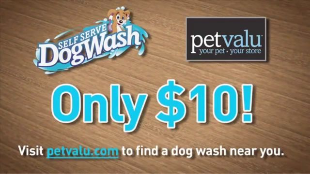Canadian Couponing The Easy Way Save Some Money On Dog Grooming Dog Grooming Couponing For Beginners Grooming