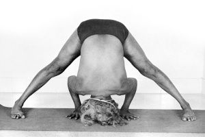 Image result for prasarita padottanasana iyengar art of yoga