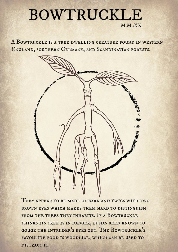 Bowtruckle Fantastic Beasts And Where To Find Them By