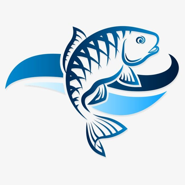 Blue Fish Marine Fish Vector Fish Fish Png And Vector With Transparent Background For Free Download Fish Vector Fish Art Fish Logo