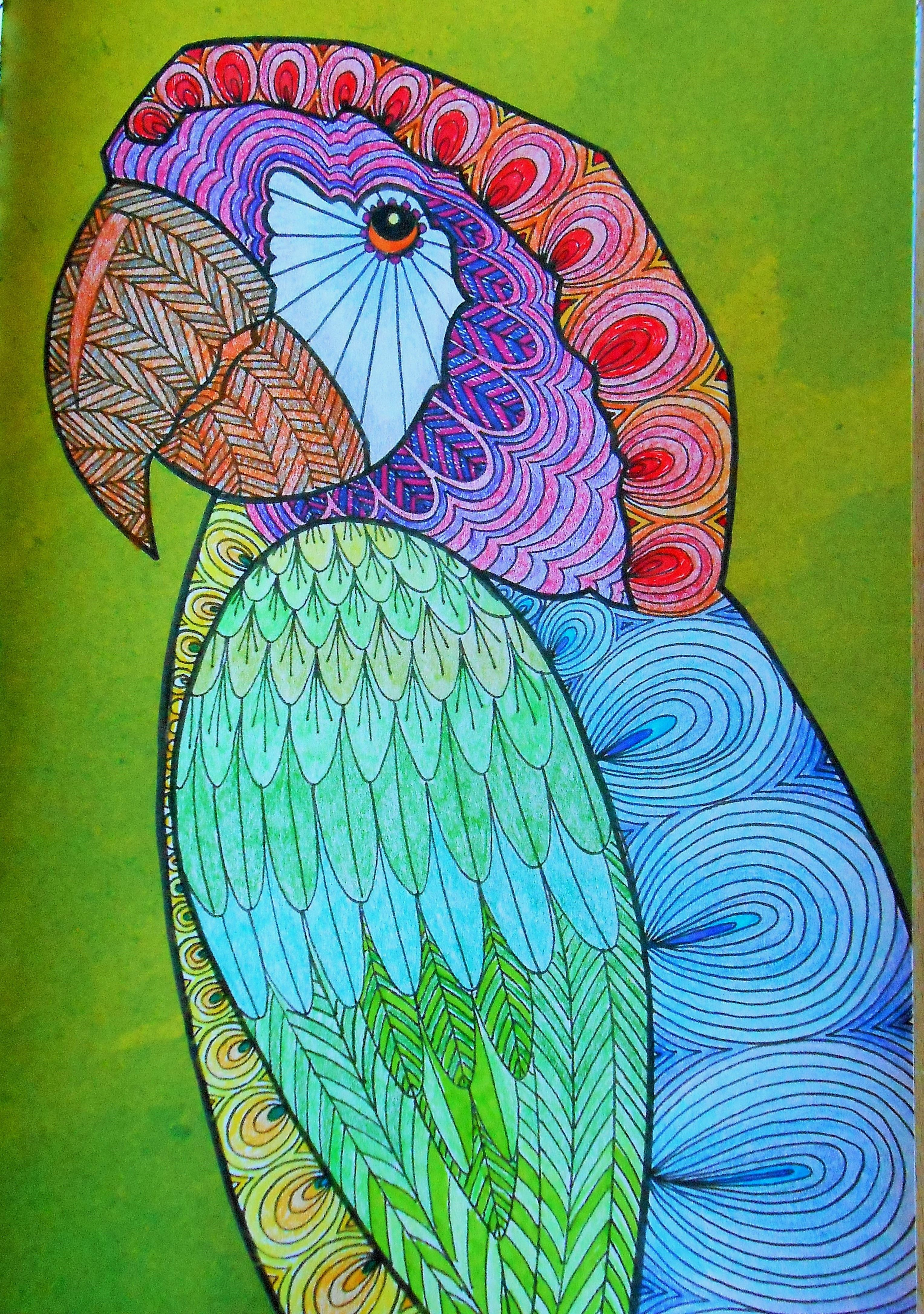 Rainbow Parrot From Art Therapy An Anti Stress Colouring Book Art Therapy Coloring Book Colouring Art Therapy Color Pencil Art