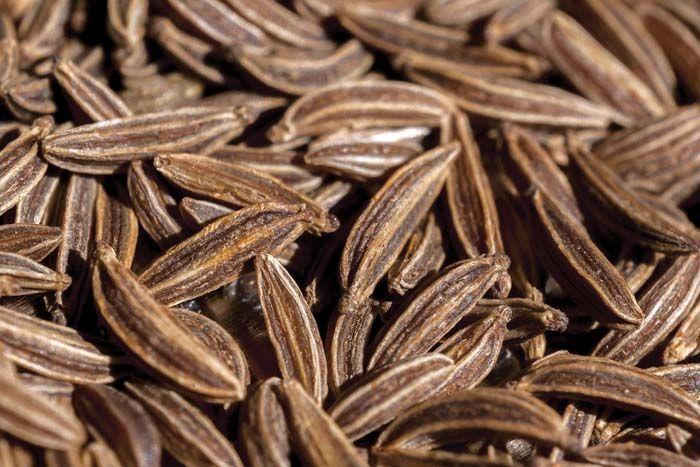 Caraway | Cumin. Mexican food dishes. Caraway seeds